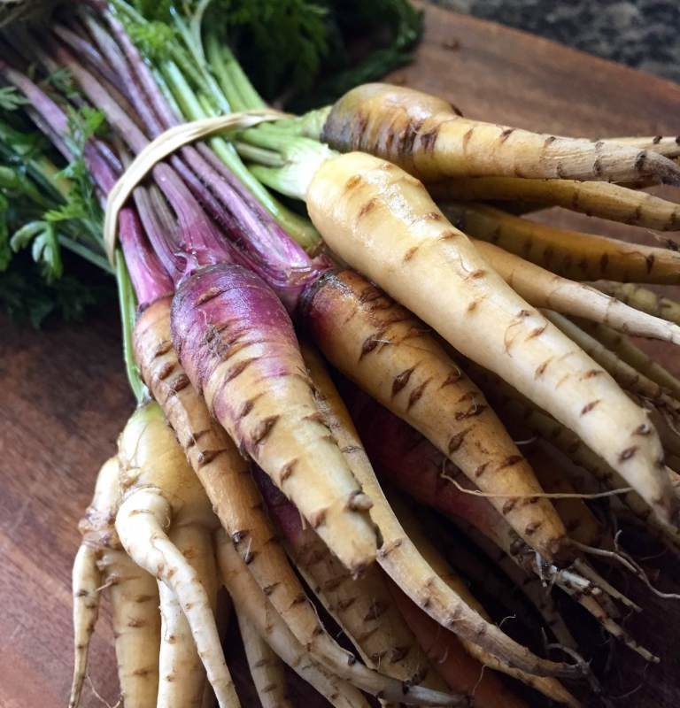 Heirloom Baby Carrots from Michicagn