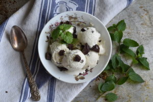 Mint Chocolate Chip Ice Cream with Fresh Mint